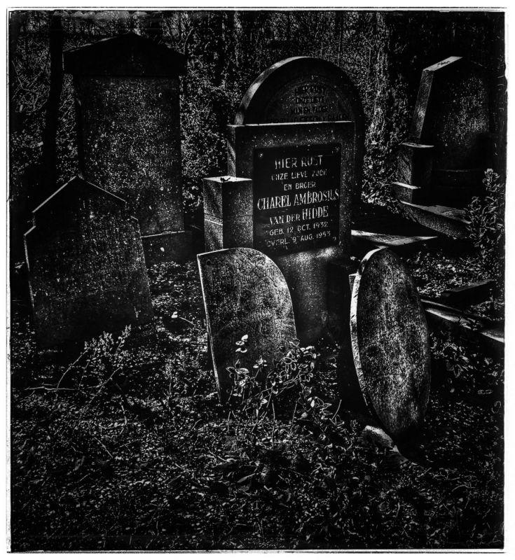 <strong>Maassluis, Oude Gemeentelijke begraafplaats</strong>