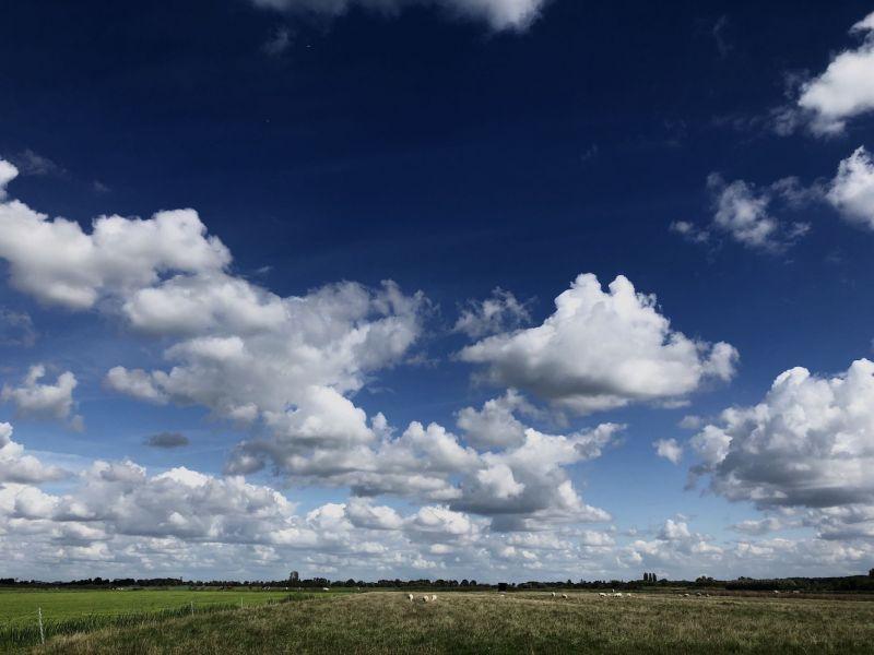 <strong>Nederland, Maasland</strong><br><p>Weilanden, uitzicht naar Delft.</p>