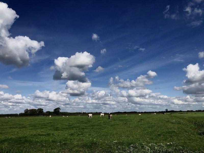 <strong>Nederland, Maasland.</strong><br><p>Zicht naar Delft.</p>