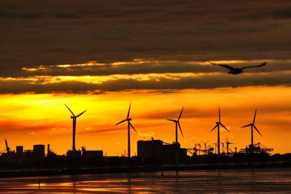 <strong>Nederland,Rozenburg, Landtong</strong>