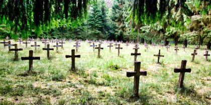 """<strong>Belgie, rekem</strong><br><p class=""""left"""">Het perceel, omsloten door naaldbos, werd in 1913 in het kadaster opgetekend en beschreven als begraafplaats ten dienste van het gesticht. Patiënten verbleven vaak hun hele leven in het gesticht en banden met de familie waren veelal volledig verbroken. De instelling verzorgde daarom de begraving van haar patiënten zelf. Van 1921 tot 1981 werden hier 1750 patiënten, uitsluitend mannen, begraven die geen banden meer met hun familie haddenBesloten werd om het te laten bestaan en te laten verstillen in harmonie met de natuur. Wat wil zeggen dat de huidige begroeiing onaangeroerd blijft en spontane heidegroei bewust niet ingetoomd wordt.</p>"""