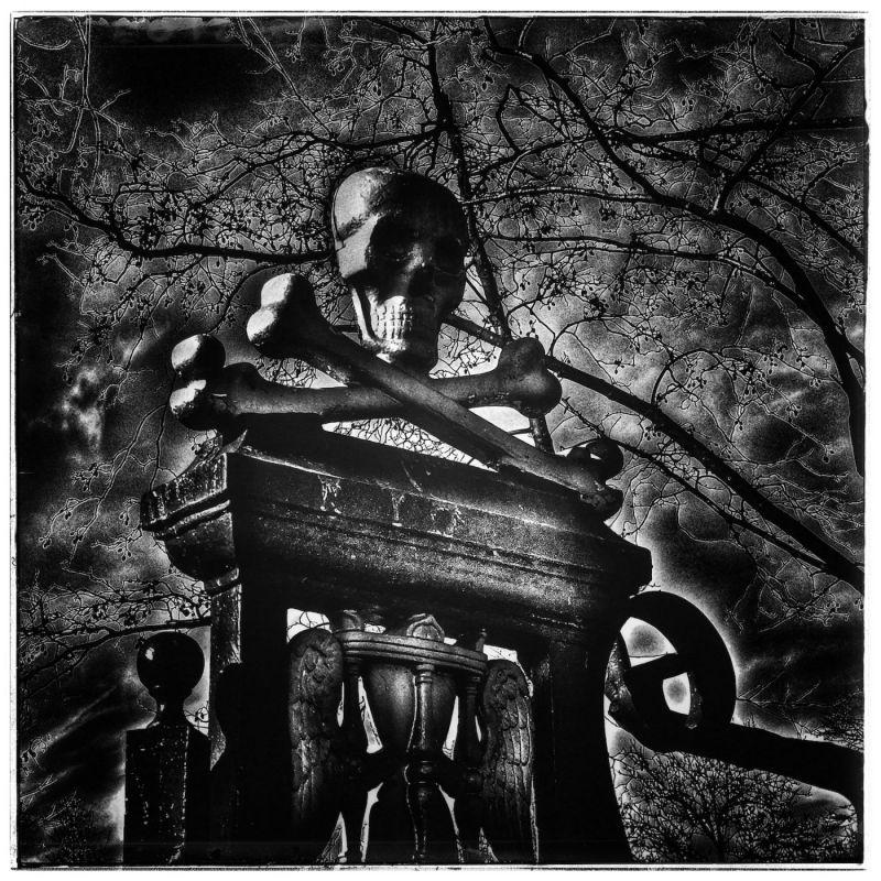 <strong>Maassland, hek begraafplaats.</strong>