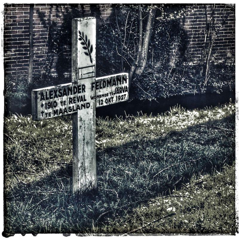 <strong>Nederland, Maasland, eenzaam graf</strong><br><p>Wie was Alexander Feldmann ?17 jaar oud geworden, geboren in Reval( Estland), begraven in het dorp Maasland.Toen in 1927 minder dan een stipje op de wereldkaart</p>